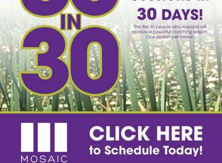 30 Free Coaching Sessions in 30 Days!