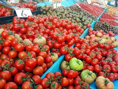 В апреле в Аланье наступает время вкусных помидор