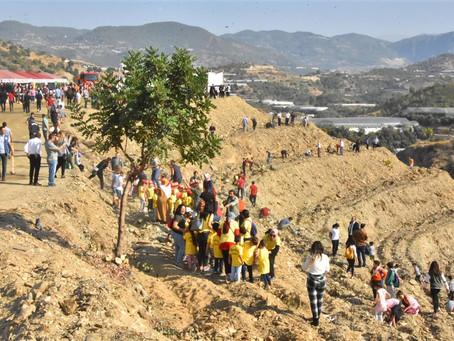 Турция установила новый рекорд Гиннеса — 13 миллионов саженцев деревьев посажено за один день!