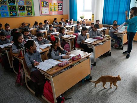 Турецкие школы начинают работать в очном режиме с 15 февраля