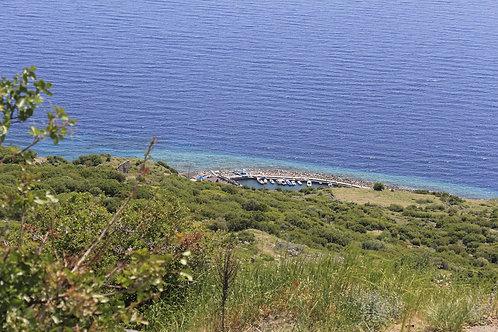 Участок земли на первой линии моря (tarla, 30 000 м2)
