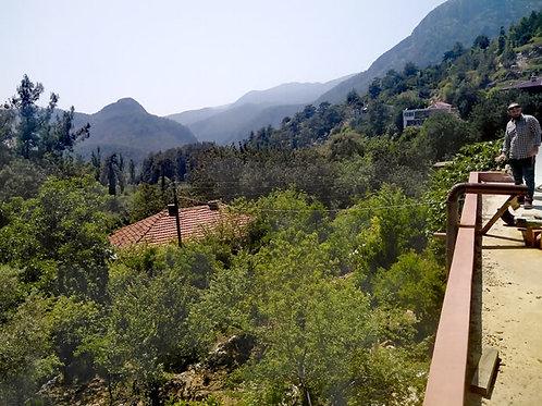 Деревенская усадьба с садом и хозяйством в горах (Оба)