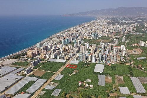 Новый инвестиционный проект: апартаменты 1+1 и пентхаусы 3+1 (Каргыджак)