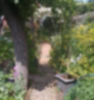 Plant Traning