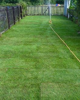 Lawn Re-turfed