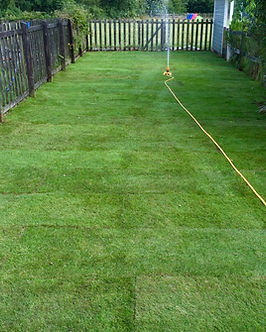 Lawn Re-turfed