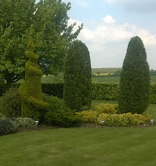 Ornate Hedge Trimming