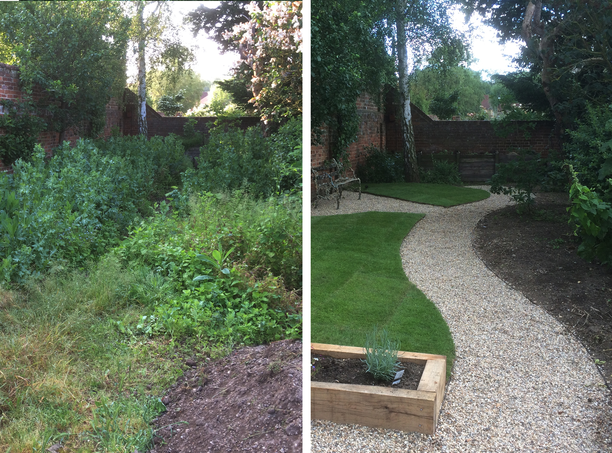Garden Re-claim