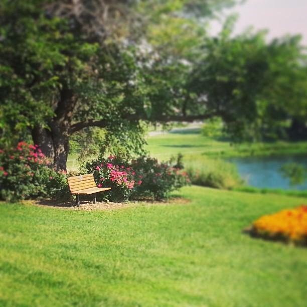 park bench topeka shawnee lake