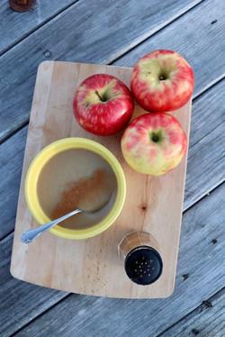 Sauk Farm Apple Sauce