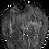 Thumbnail: Black and White Sauk Farm Logo T-Shirt