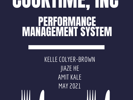 Project Plan - Performance Management System