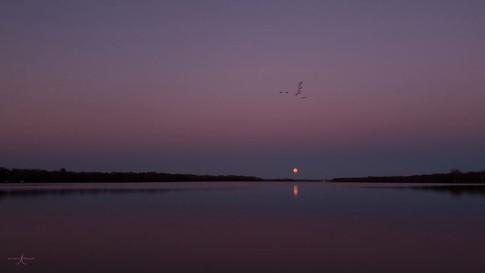 Lune bleu.jpg