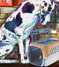 Dogs That Travel sm.jpg