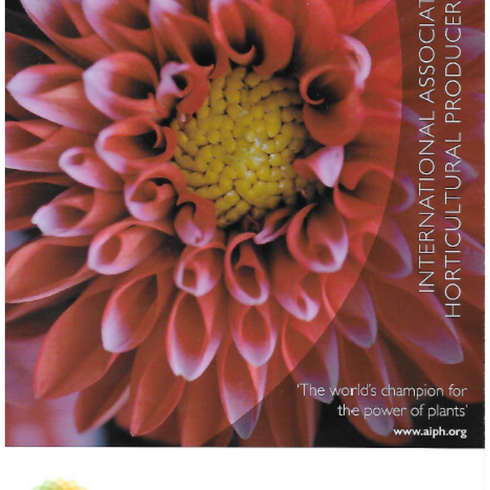 AIPH corporate brochure.png