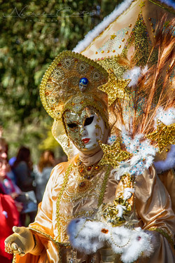Carnaval vénitien 17