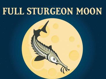 2021.08.22 Sturgeon Moon, August 2021