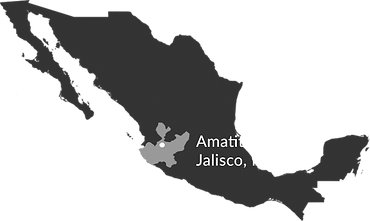 Map of Amatitán, Jalisco, Mexico