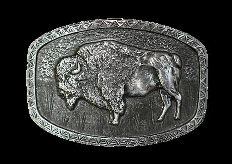 1884 Buffalo