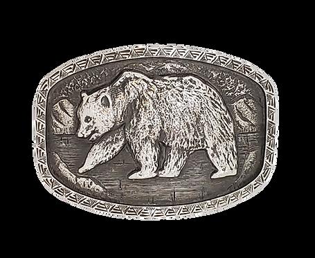 1884 Bear