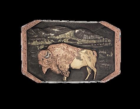 Wilderness Buffalo