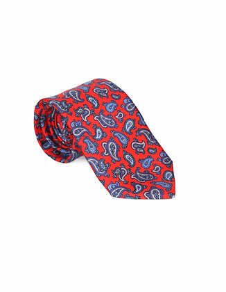 Corbata Roja Amebas