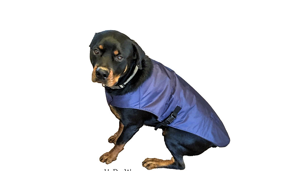Insulated BigDog Dog Coats