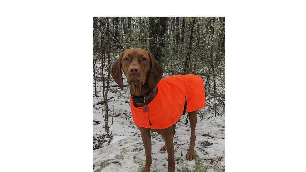 EveryDog Dog Coats