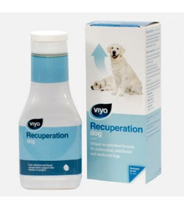 VIYO Recuperation Dog 150ml