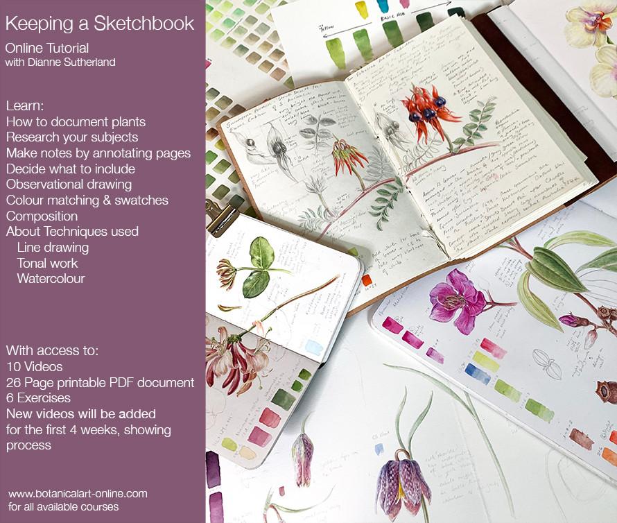 sketchbook Tutorial 1.jpg