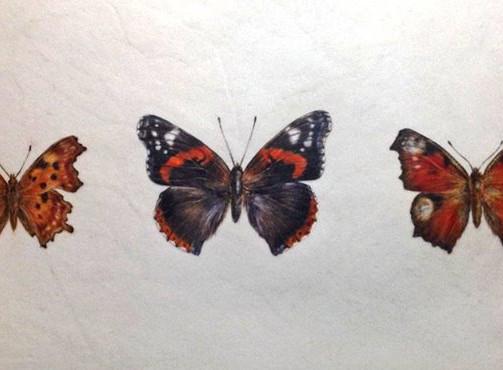 Three British butterflies