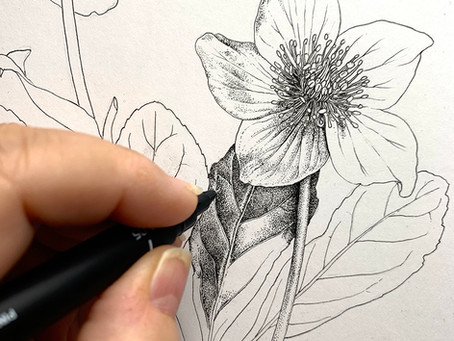 Two New Tutorials Added: Drawing & Keeping a Sketchbook