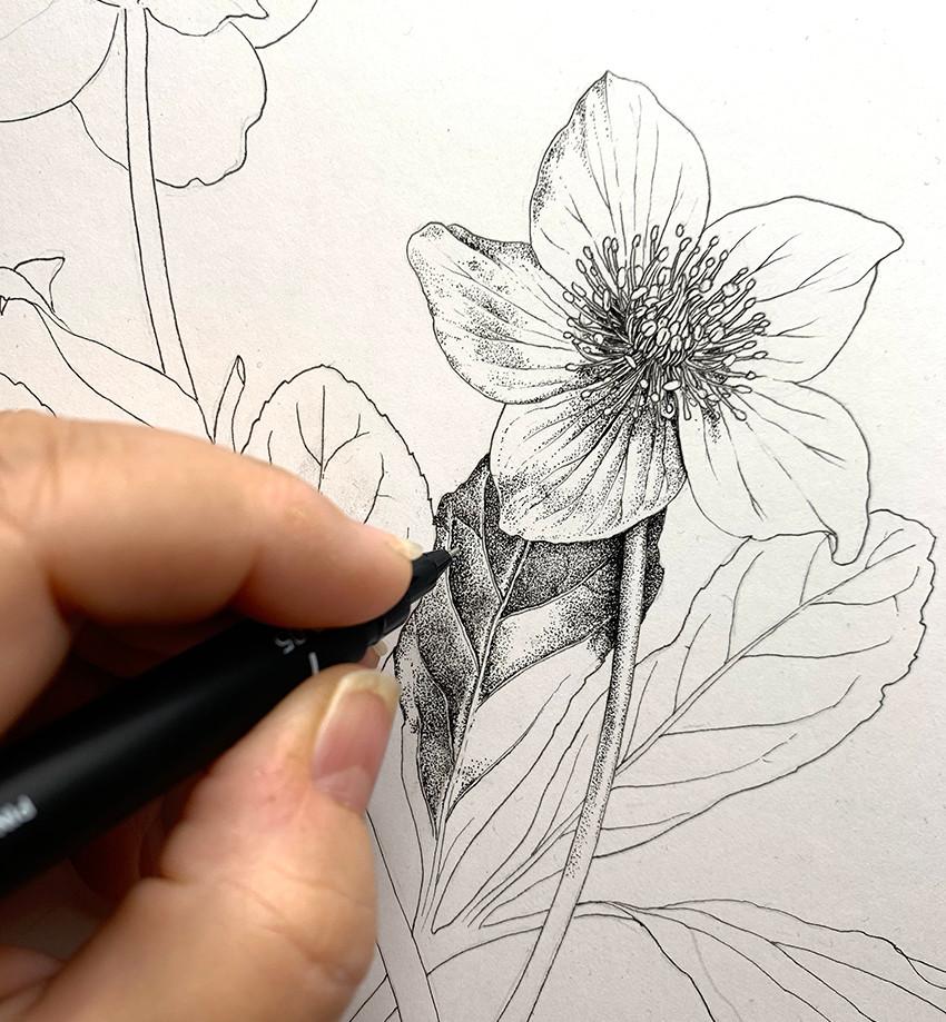 stipple in ink.jpg