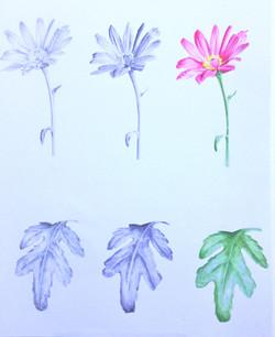 Tone and colour, Kathleen Gordon