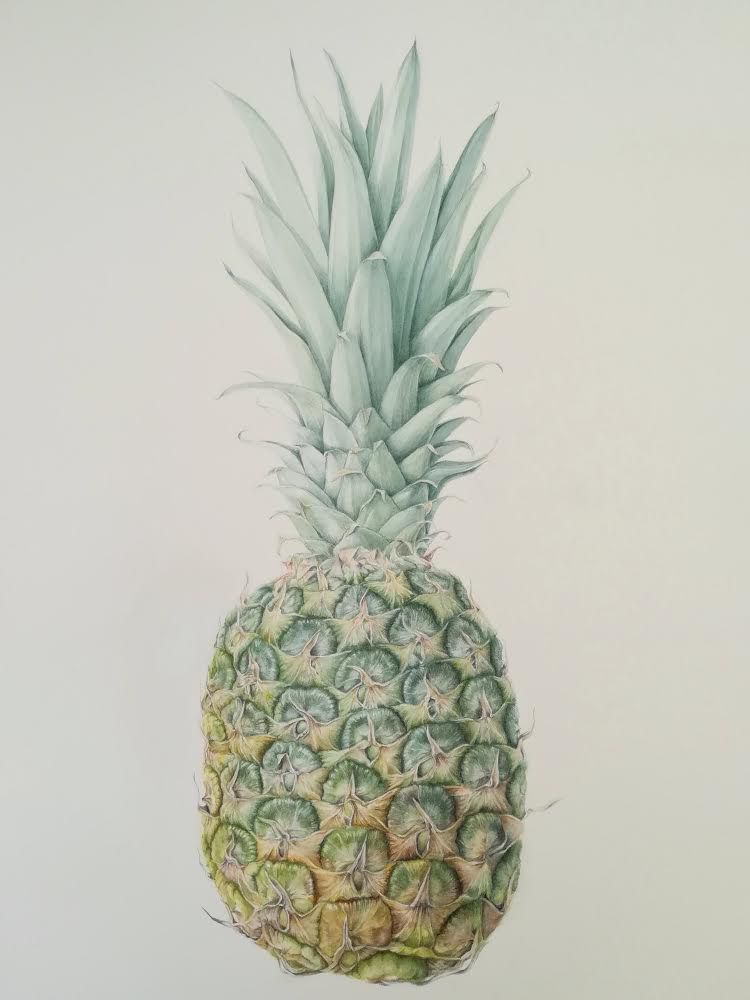 Angela Hooton Pineapple