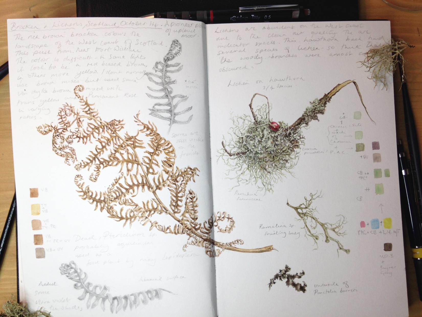 Habitat study