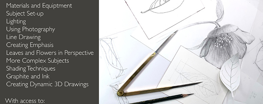 Drawing Perspective and Form Tutorial 1.