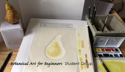 Starting a pear in the workspace
