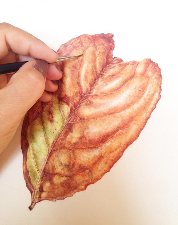 Fine detail and veins