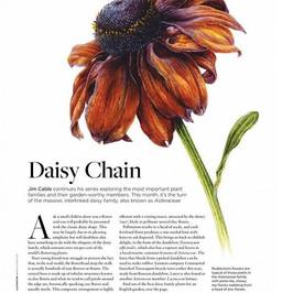 Plant Families, English Garden Magazine