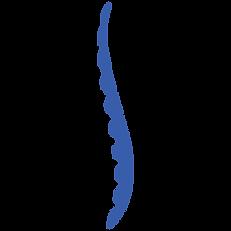 spine-blue.png