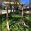 Thumbnail: Wooden Arch