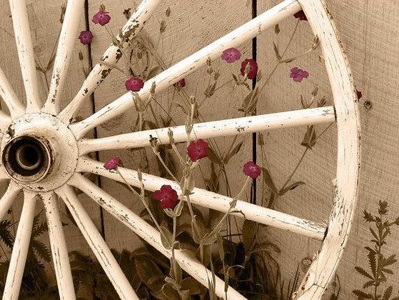 Wagon Wheel-antique white