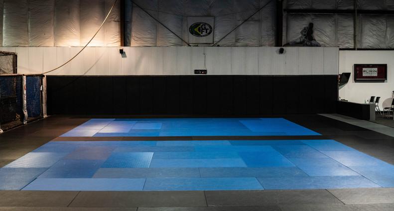 Ronin Training Center BJJ/Judo Mat