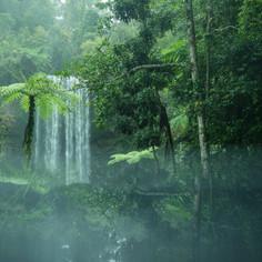 Waterfalls - Atherton Tablelands (2).jpg