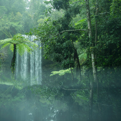 Waterfalls - Atherton Tablelands (2).jpg