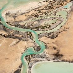 Shark Bay, Australia - Lisa Michele Burn