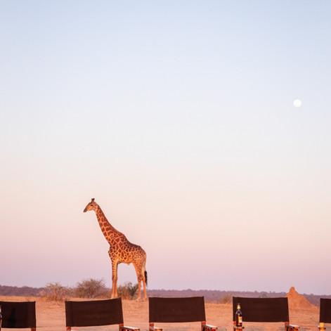 Jabulani South Africa-34.jpg