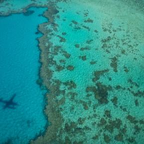 Hardy Reef, Great Barrier Reef (3).jpg