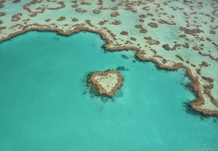 Heart Reef, QLD